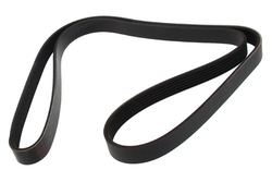 MAPCO 261548 V-Ribbed Belt