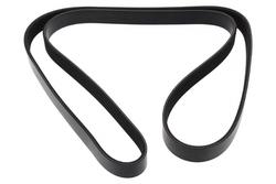 MAPCO 261610 V-Ribbed Belt