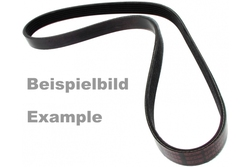 MAPCO 251355 V-Ribbed Belt