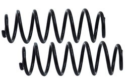 MAPCO 71890/2 Suspension Kit, coil springs