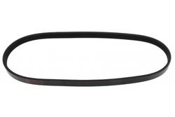 MAPCO 240730 V-Ribbed Belt