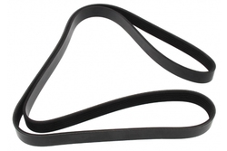 MAPCO 261637 V-Ribbed Belt