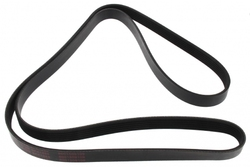 MAPCO 261880 V-Ribbed Belt